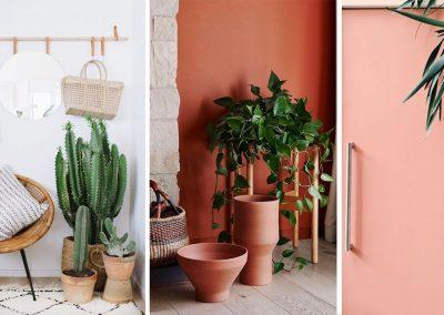 Urban jungle als slimme styling tool voor je interieur